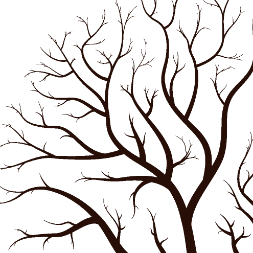 Birds vector our family tree