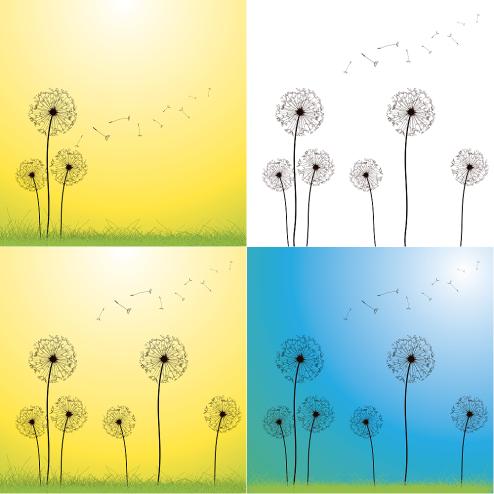 _vector-dandelion-vector-cs-by-dragonart