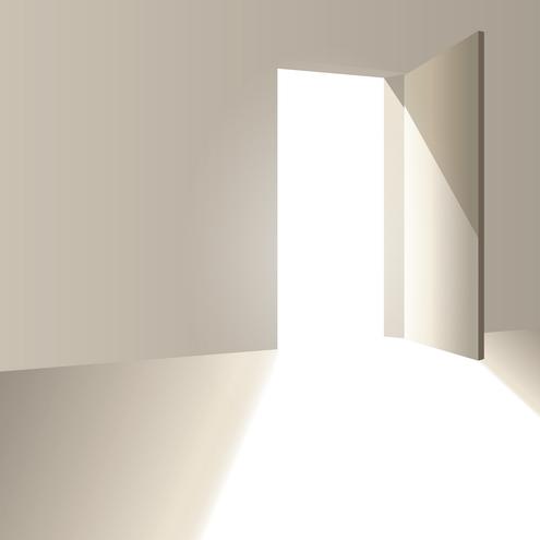 _Vector - Door Opening Preview by DragonArt