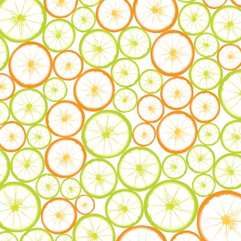 _Vector - Fruit Slices Prev by DragonArt