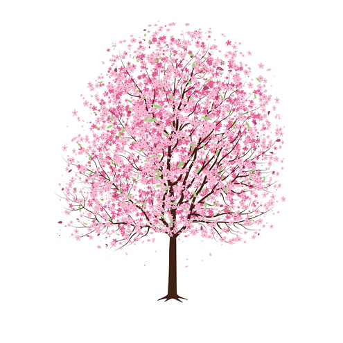 Vector - Pink Cherry Blossom Tree 02 by DragonArt