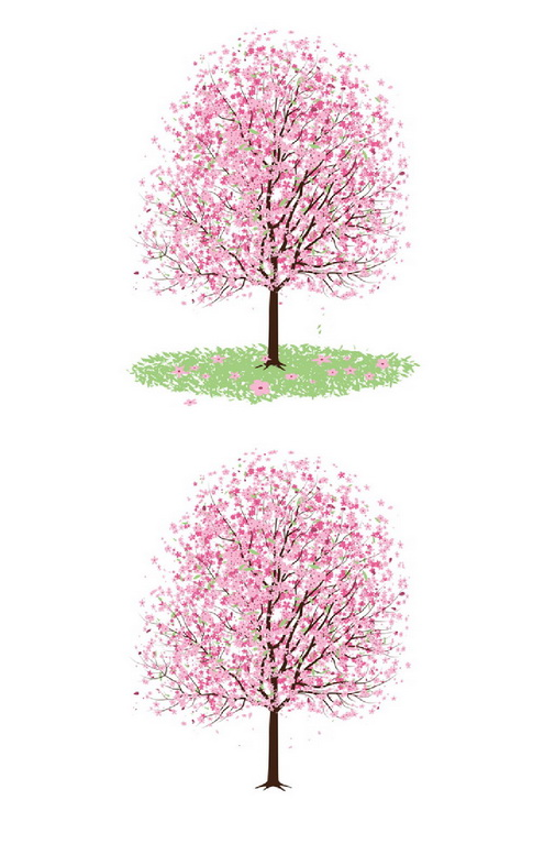 _Vector - Pink Cherry Blossom Tree CS by DragonArt